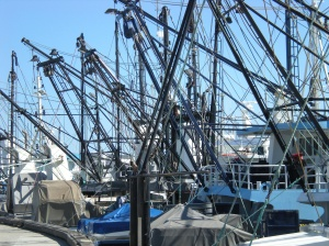 A few boats $$$$$$$$$$$$$