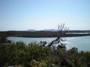 Yankie Bay